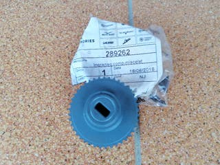 Engranaje Piñon Bomba de Aceite /Agua Piaggio NRG
