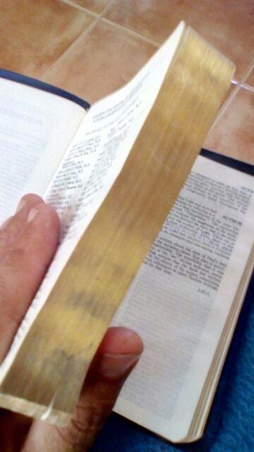 The Holy Bible (biblia inglesa)