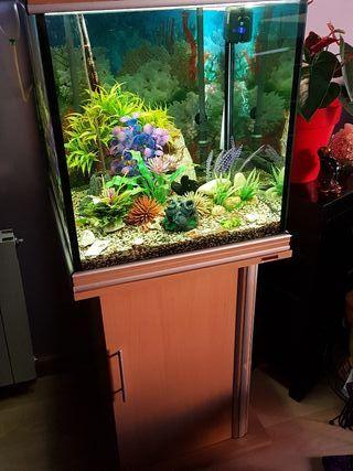 Acuario de peces, tropicales. 200 litros.