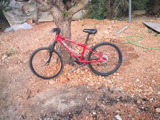 bicleta rueda 24
