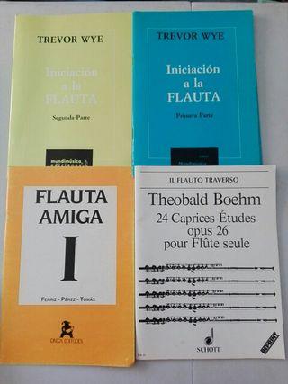 Métodos y partituras flauta. Trevor Wye, Boehm