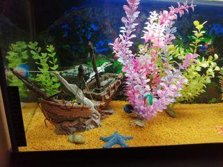 decoracion acuario