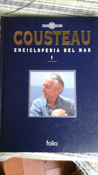 Librería (colección, enciclopedias, educación.