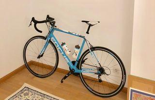 Bicicleta Carretera Focus Cayo Team Replica 2016