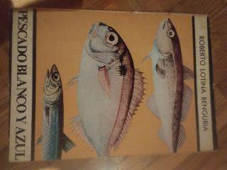 roberto lotina benguria pescado peces setas