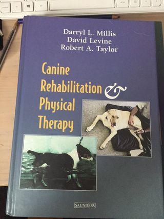 Rehabilitación y fisioterapia canina