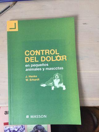 Control del dolor en pequeños animales y mascotas