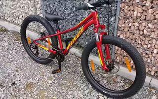 bicicleta Specialized big roller (niño)