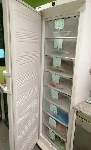 Congelador Liebher