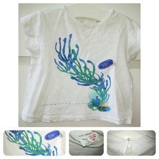 Camiseta Manga Corta Zara_12/18 meses
