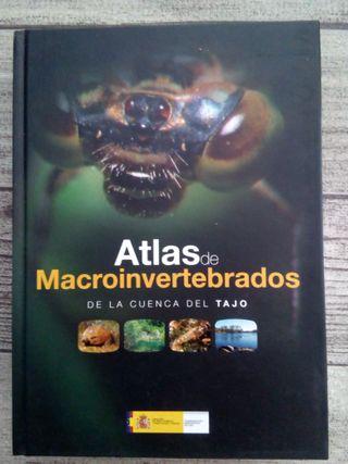 Atlas microinvertebrados