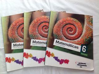 Libros matematicas 6to primaria