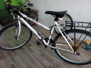 bici chica