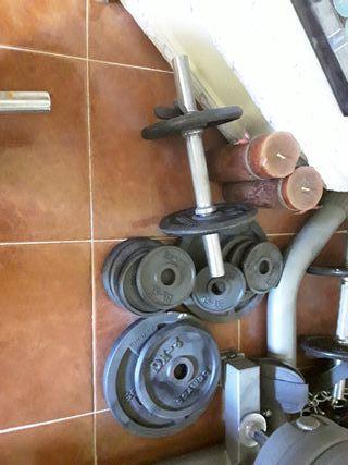 barras y pesos musculacion