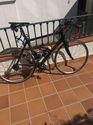 Bicicleta carretera bh carbón classic