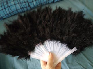 abanico de plumas negras