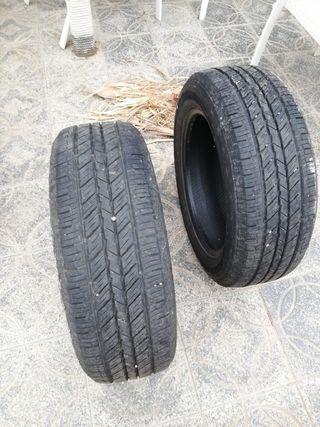 Neumáticos Evergreen