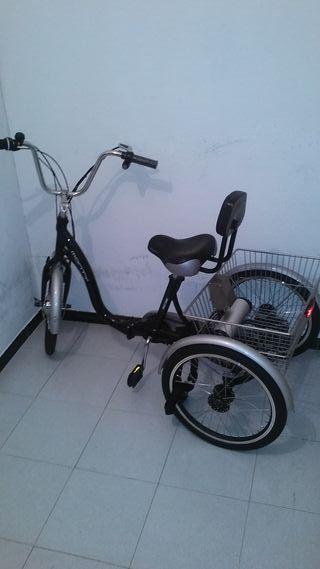 Triciclo eléctrico MONTY