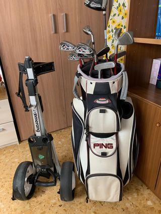 Juego de palos de golf con bolsa y carro
