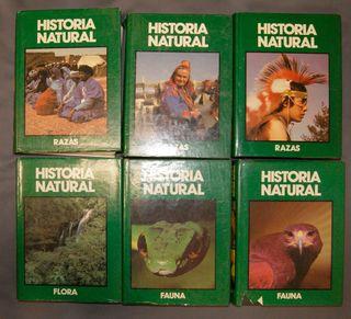 Lote 6 Enciclopedia historia natural