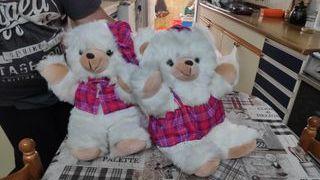 lote de 2 osos