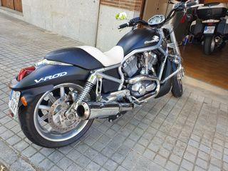 Harley Davidson. VROD