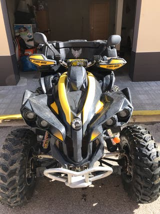 Can-am Rennegade 800