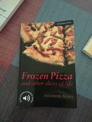 frozen pizza and other slices of life summary