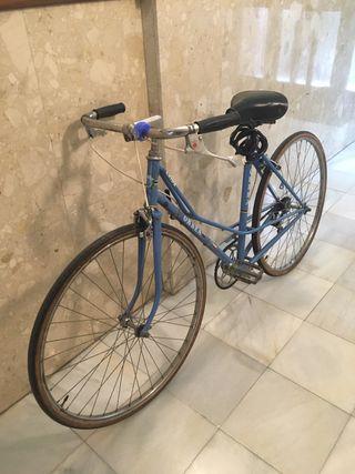 Orbea vintage bici (pequeño)