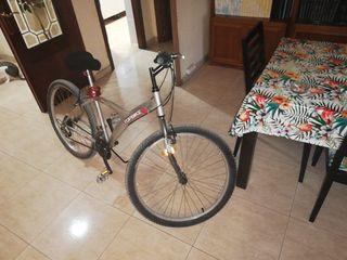 bicicleta mujer adultq