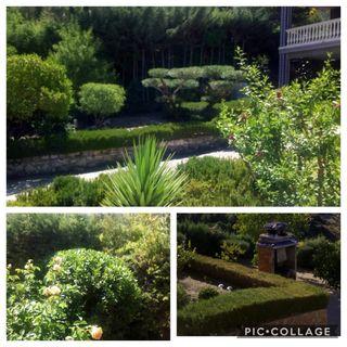 Jardinería Decoración y Adorno Floral
