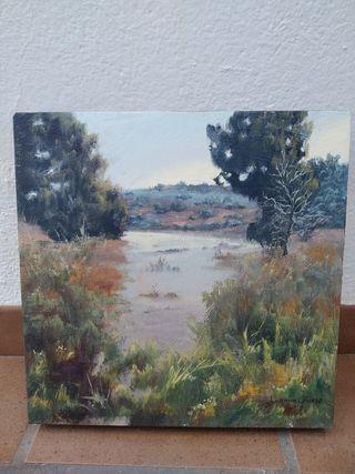 Cuadro paisaje Lagunas. Oleo 40 x 40 cm