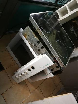 estufa y vitro