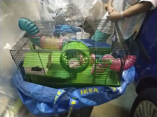 Jaula hamster 46*28,5* 27cm