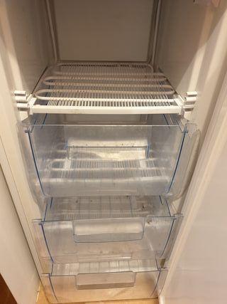 congelador vertical 125cm.