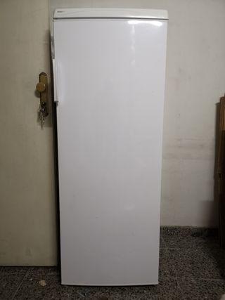 congelador vertical perfecto