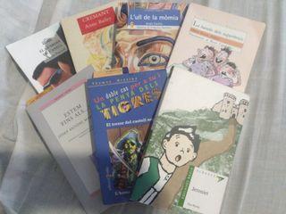 lote libros en valenciano.