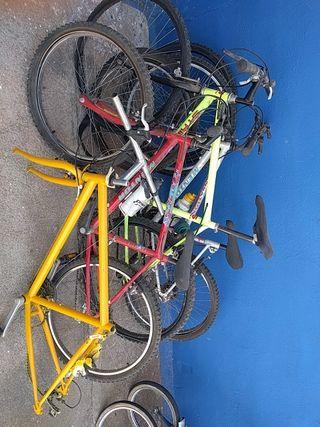 lote bicicletas con regalo