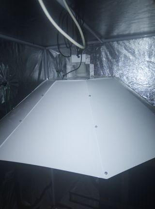 Reflector parabólico para cultivo indoor