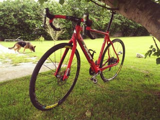 mmr de ciclocross