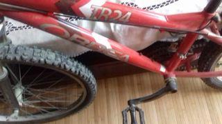 Bicicleta ORBEA TR 24