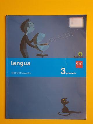 Lengua 3 primaria, 3 tristemente.
