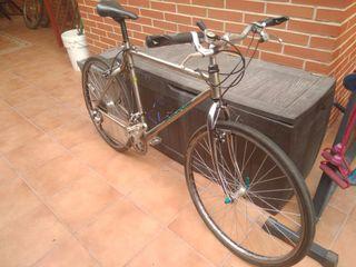 Bicicleta para ciudad mongoose