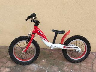 Bicicleta niño(a)