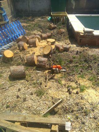 leña de pino