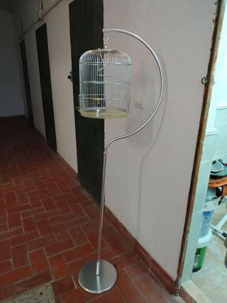 Jaula pájaro