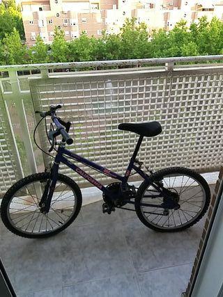 Bici California BH