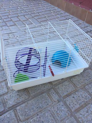 Jaula hamster/ raton