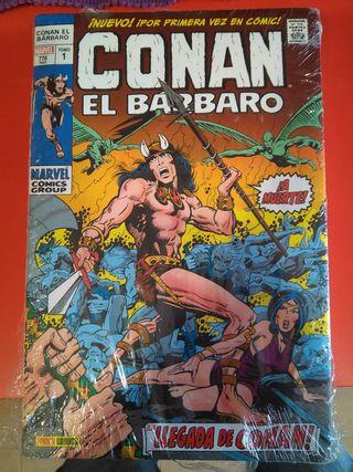 Marvel Omnibus: Conan el Bárbaro