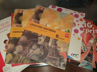 Libros 6 primaria Lote 50€ Separados 10€/ud